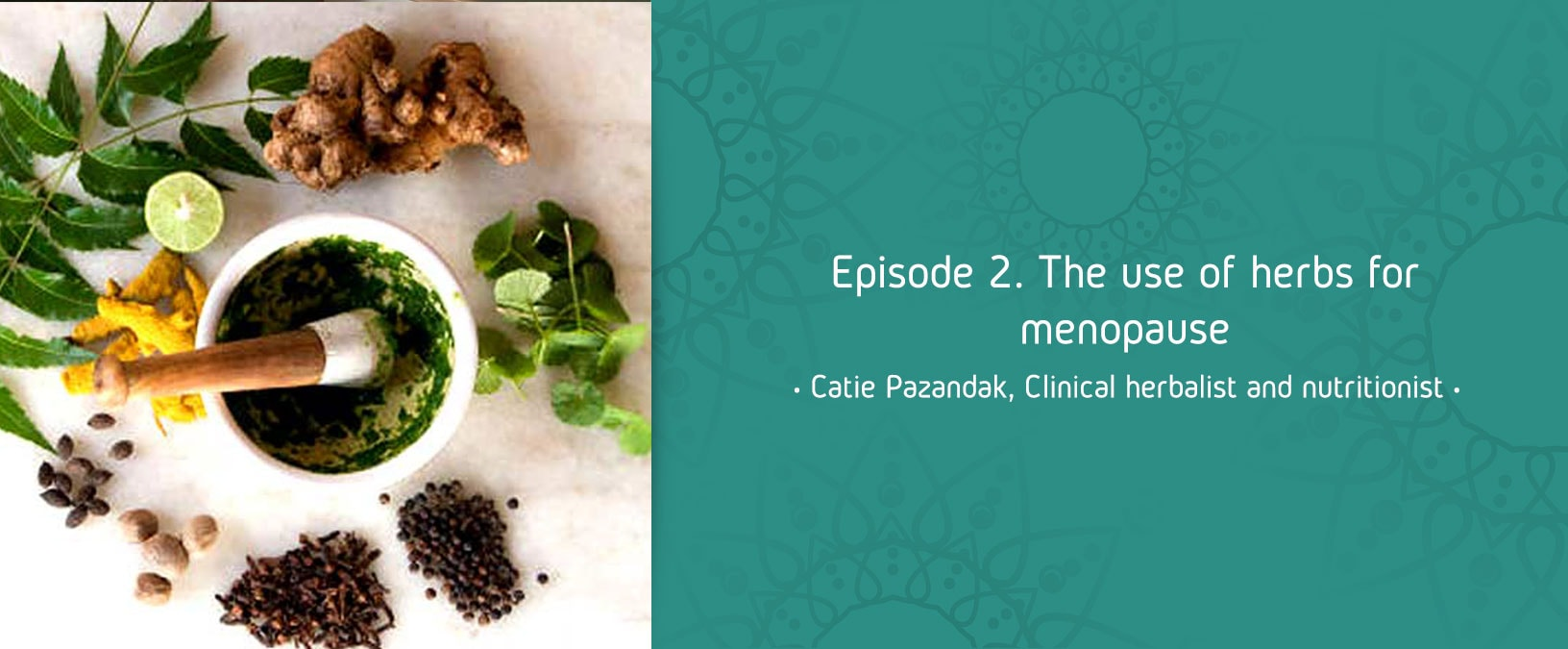 Episode 2. The use of herbs for menopause