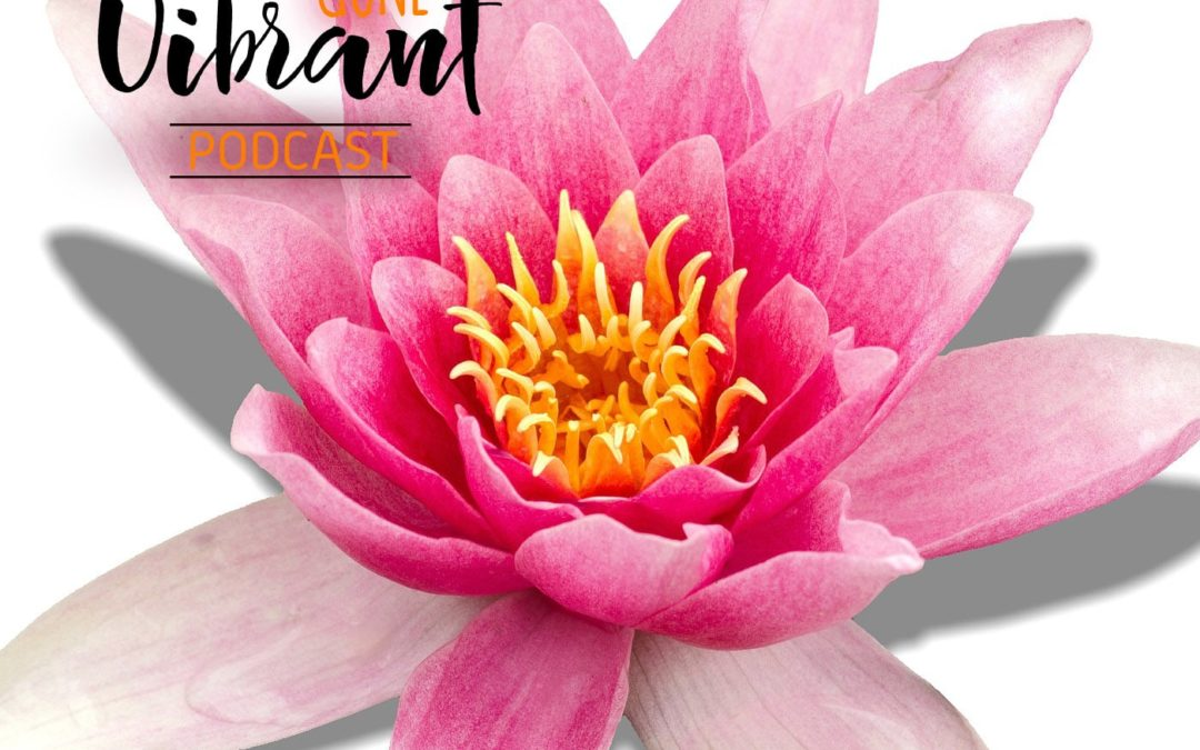 Episode #14. Midlife & Menopause: Portal of transformation
