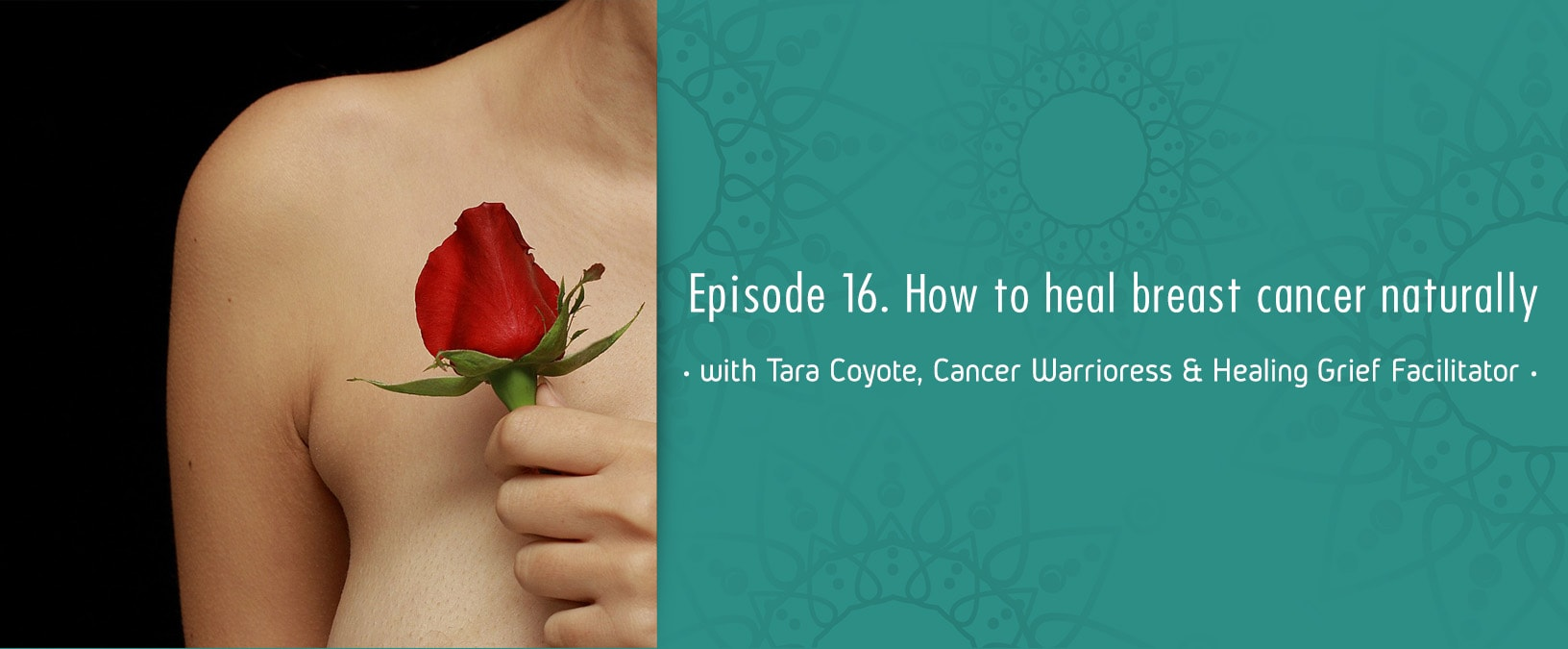 How to Heal Breast Cancer Naturally